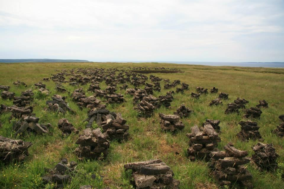 Peats drying on Islay
