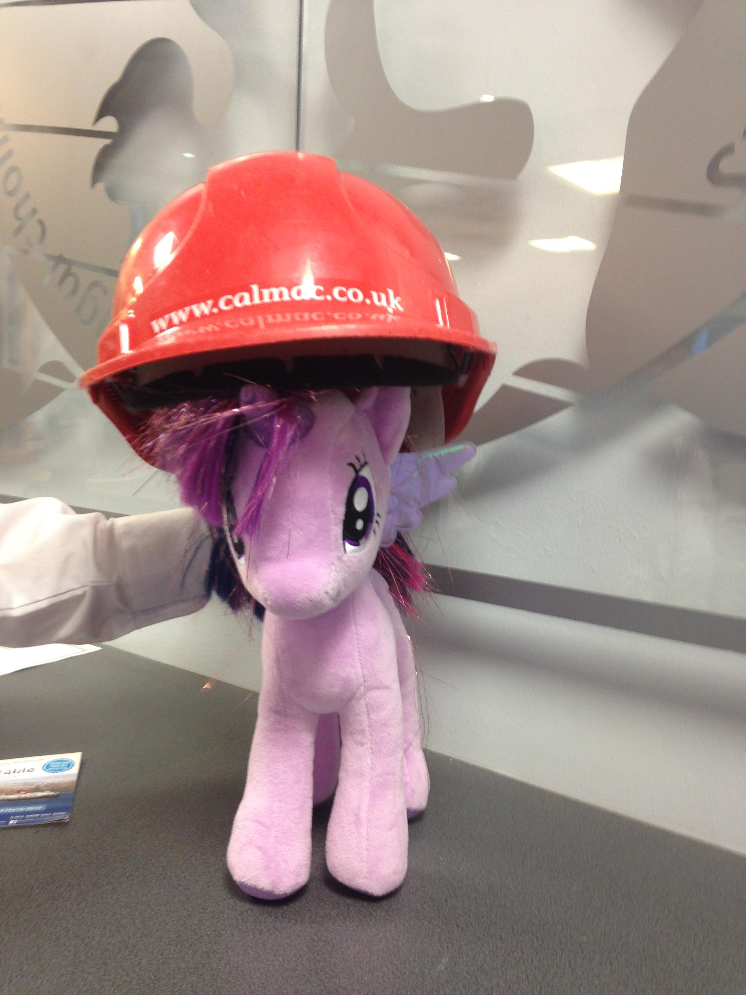 toy pony with safety hat