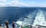 Watch out for dolphins and porpoises on the CalMac sail from Oban-Craignure