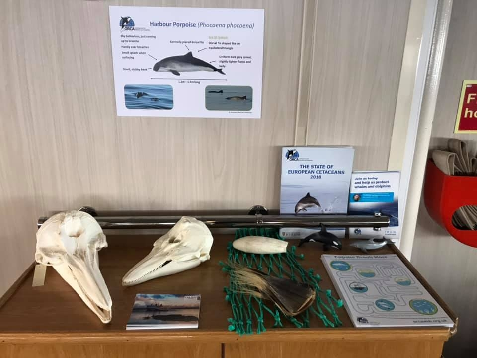 Earth Day 2019, display on Clansman