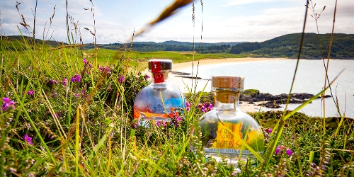 Colonsay gin